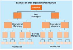 organisational culture essay